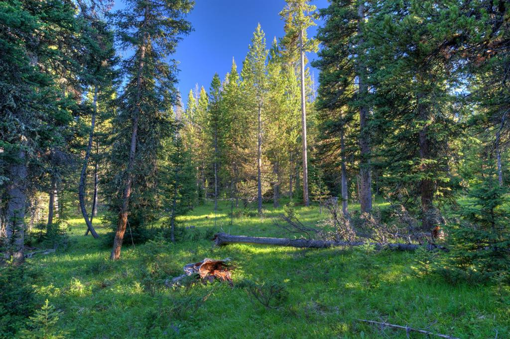 Lot-16 Elk Ridge Ranch Drive  Big Sky Photo 2