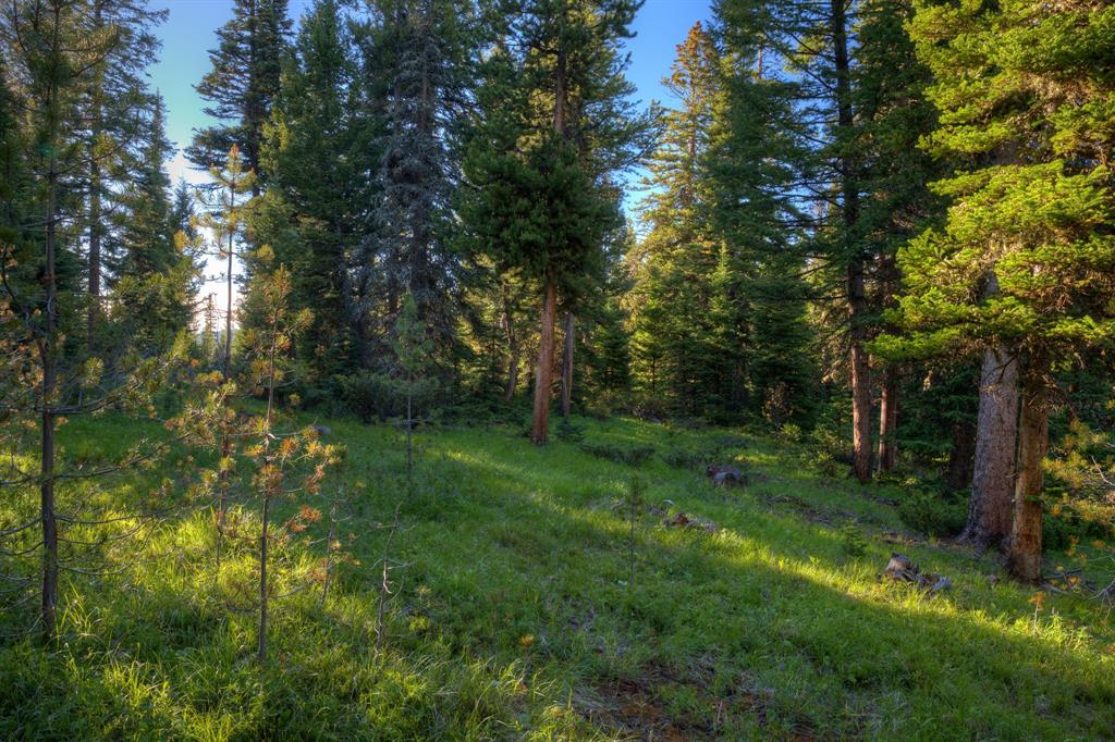 Lot-16 Elk Ridge Ranch Drive  Big Sky Photo 3