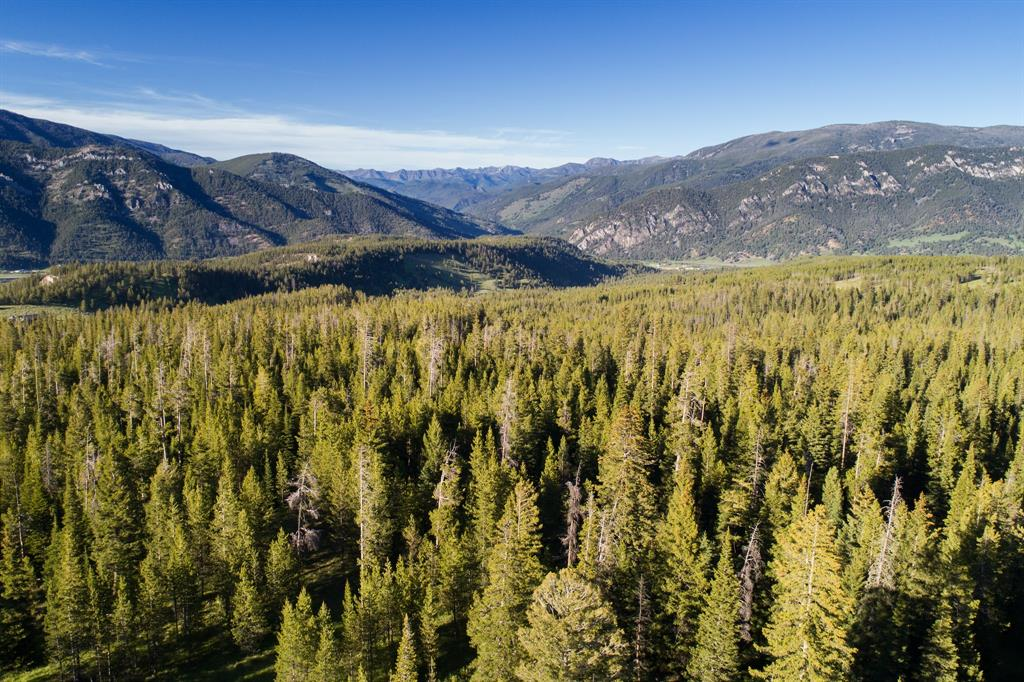 Lot-16 Elk Ridge Ranch Drive  Big Sky Photo 5