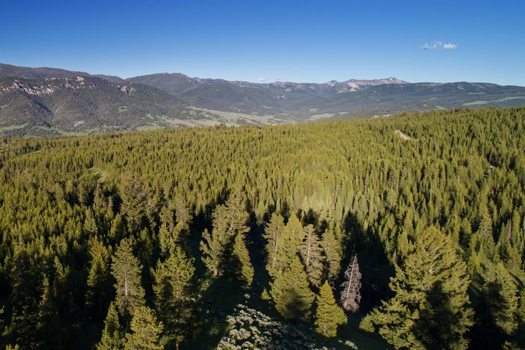 Lot-16 Elk Ridge Ranch Drive  Big Sky Photo 6