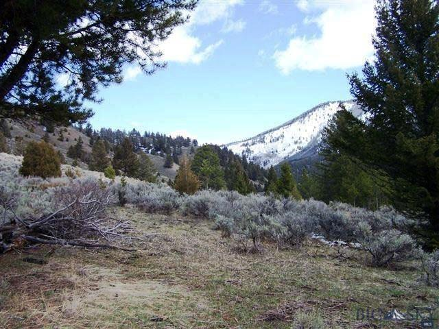 Lot4 Lower Dudley Crk Road  Gallatin Gateway Photo 9